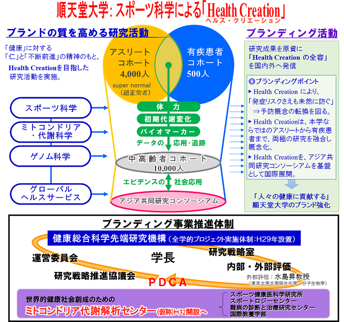 Health Creation